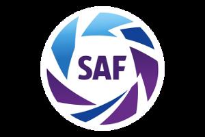 Argentina League Logo