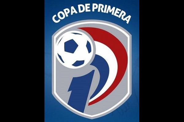 Paraguayan Primera División logo
